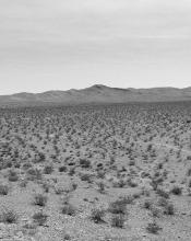 Come la sabbia, l'Islam si alza a folate, si diffonde con la violenza delle tempeste o con l'avanzare strisciante della desertificazione